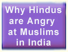Why Hindus are Angry at Muslims in India